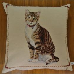 Kuddfodral sittande brun katt