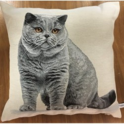 Kuddfodral sittande grå katt