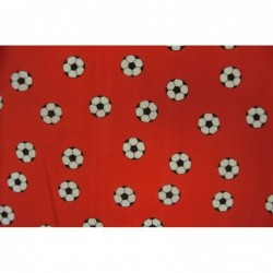 Fotbollar RÖD
