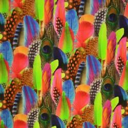 Färgglada fjädrar