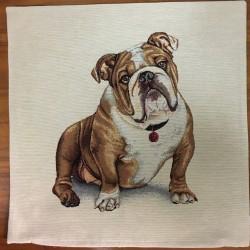 Bulldog BRUN