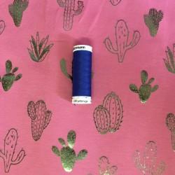 Kaktusar på ROSA